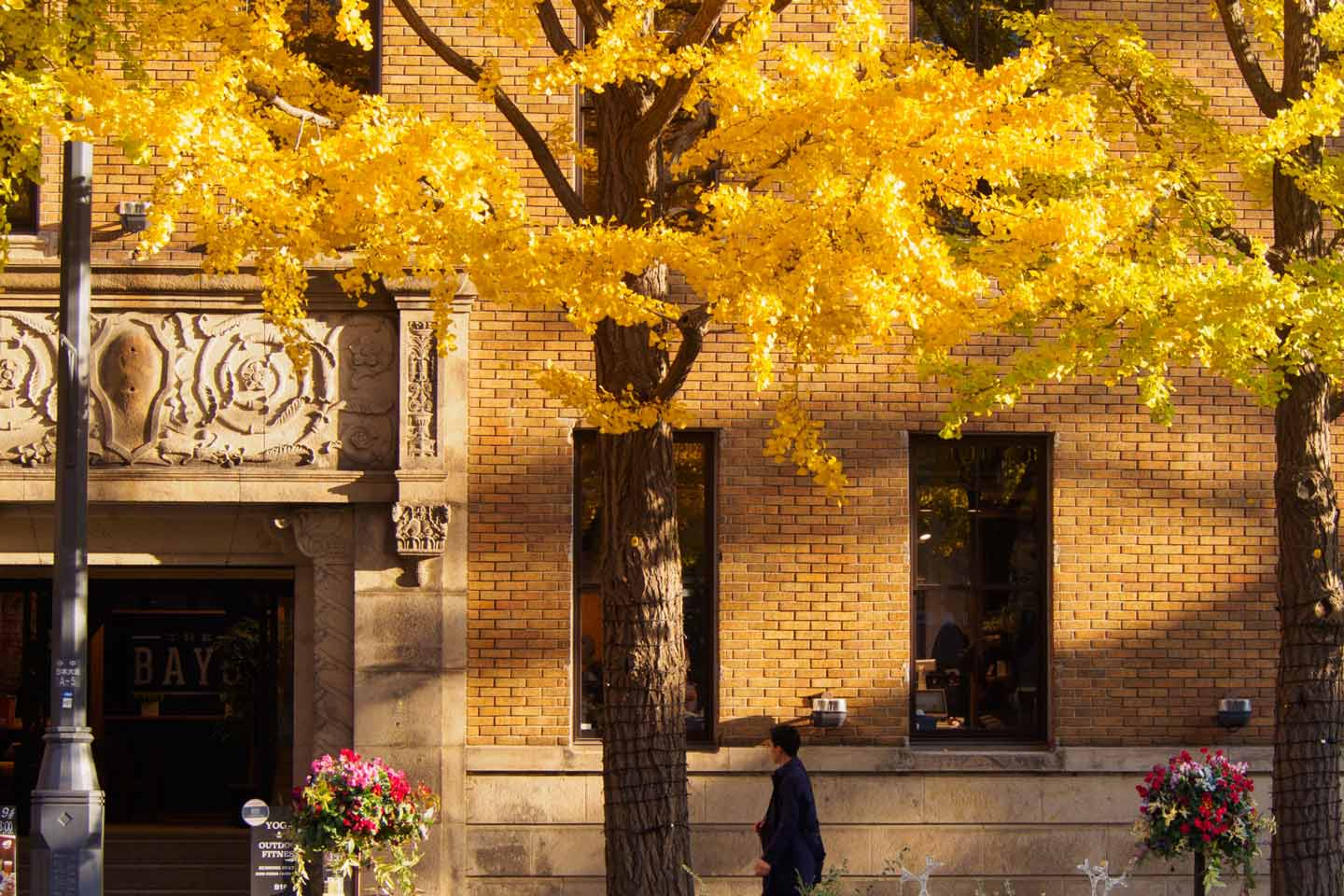 8 Best Places to See Fall Foliage in Yokohama