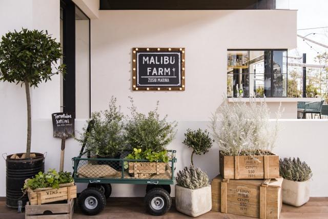 「MALIBU FARM」