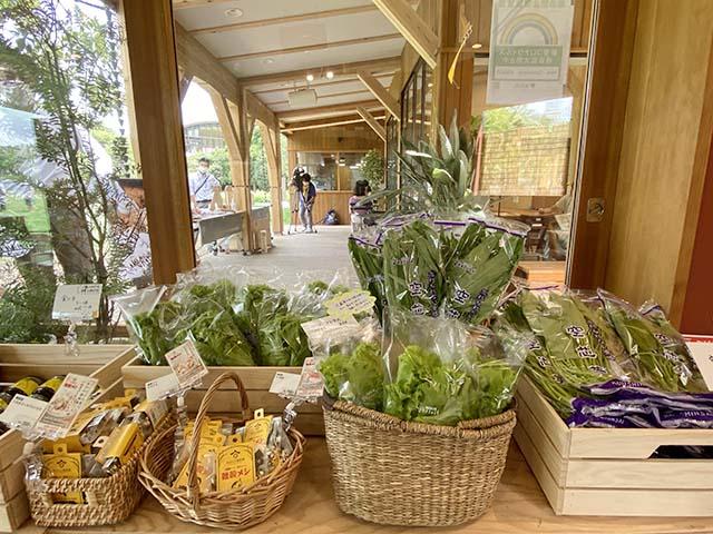 千葉県の契約農家から届いた旬彩が並ぶファーマーズマルシェ