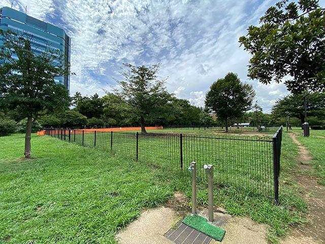 Park Community KIBACOすぐ横には木場公園のドッグランがあります