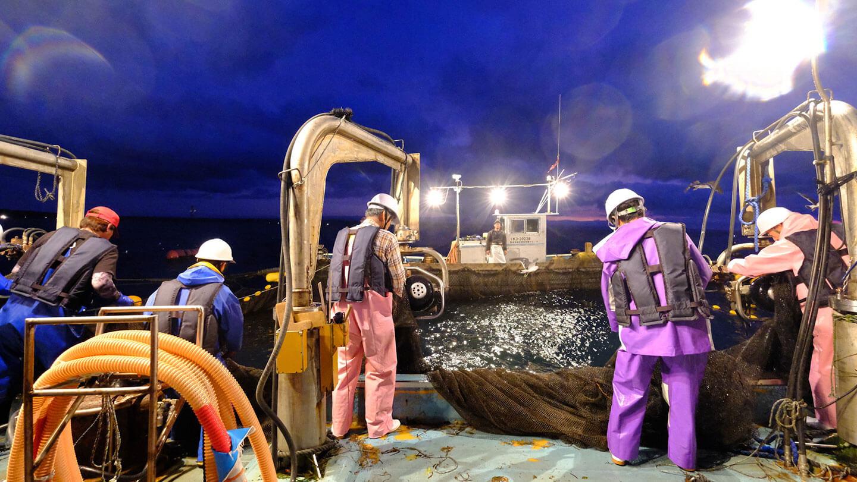 【能登・七尾】日本人なら知っておきたい漁師の仕事「鹿渡島定置」で感動の定置網体験!