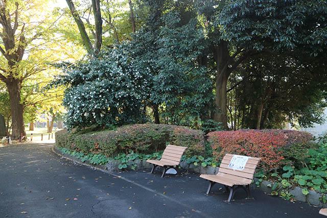 菅刈公園(すげかりこうえん)