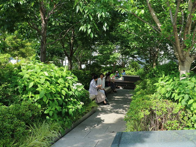 Rooftop Garden at Ginza Six