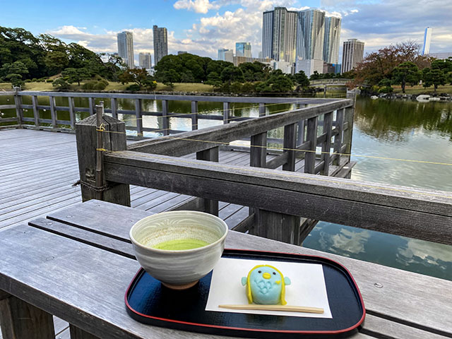Peaceful quiet moment overlooking the pond while enjoying Japanese sweets and green tea