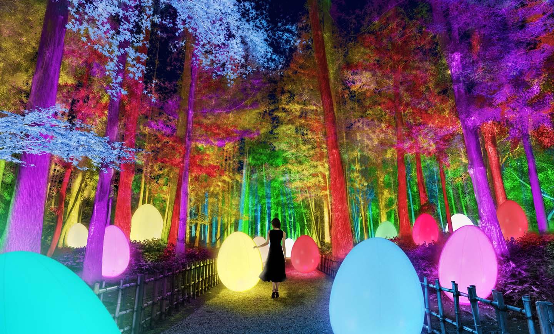 Mito Plum Blossom Festival 2021