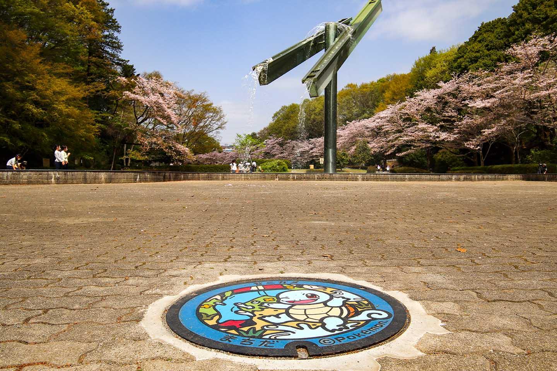 Utility Hole Cover with a Pokémon Design in Serigaya Park