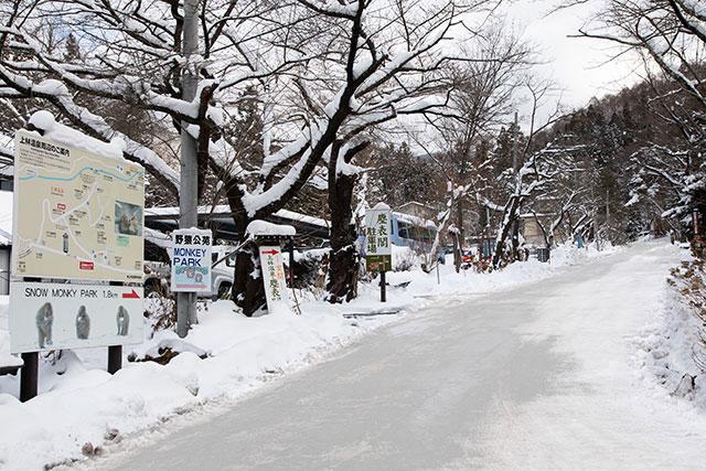 山路稍微陡峭 建議穿雪地專用的靴子